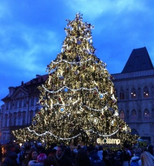 Prague's official Christmas tree at Old Town Square, December 2013